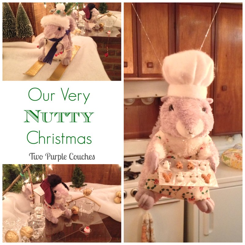 Our Nutty Christmas