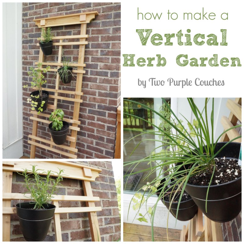 How to Make a Vertical Herb Garden by Two Purple Couches #gardening #urbangardening #verticalgardens #herbs #basil #cilantro #rosemary #chives