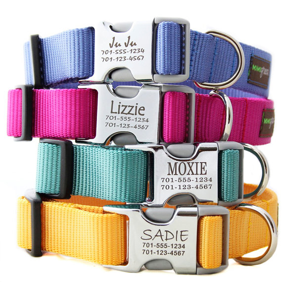 Mimi Green Engraved Dog Collars