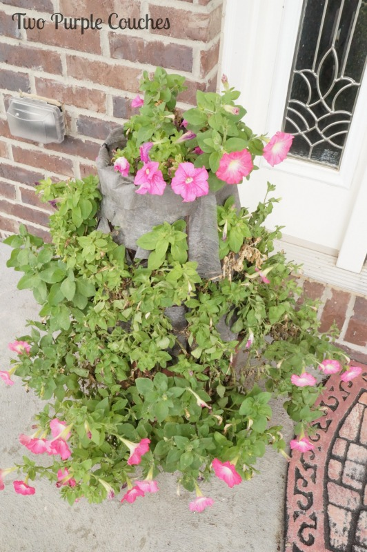 Vertical garden on this summertime garden tour by Two Purple Couches #gardening #summergarden