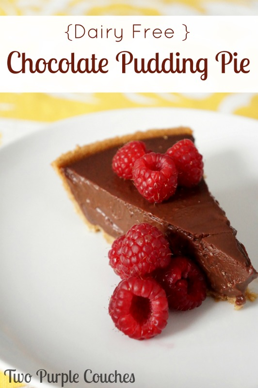 It's rich. It's creamy. And yes, it's dairy free! Chocolate Pudding Pie via www.twopurplecouches.com