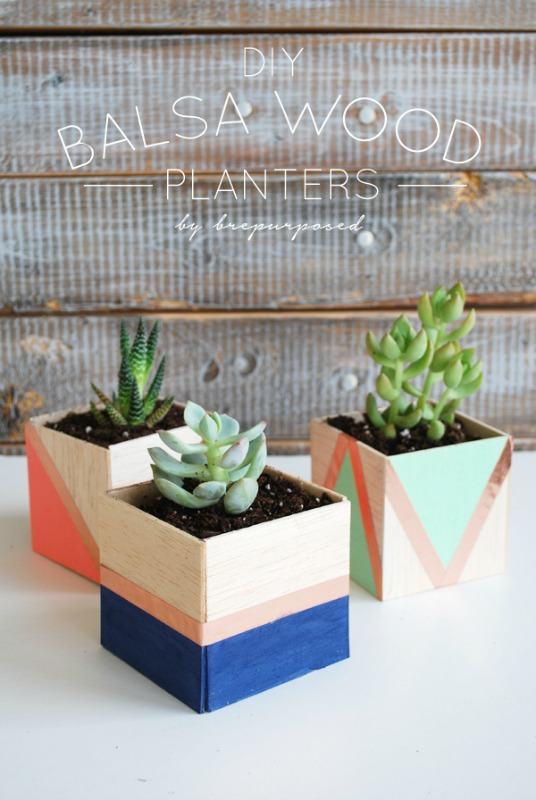 Creative Spark Feature: Balsa Wood Planters from Brepurposed