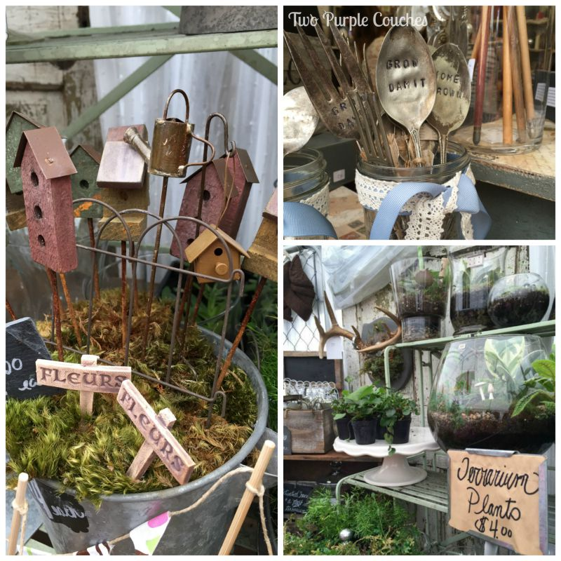 Tons of terrariums seen at the 2015 Country Living Fair in Columbus, Ohio. via www.twopurplecouches.com