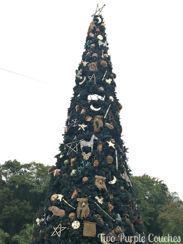 Animal-Kingdom-Tree-TPC