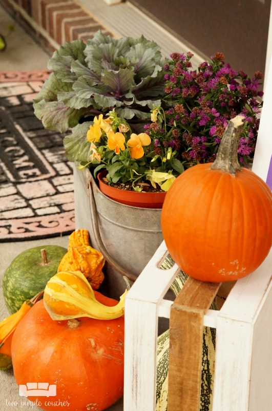 Great ideas for creating colorful, rustic fall porch decor and outdoor fall decorating ideas. Love the mix of purples and yellows - a fresh take for fall!