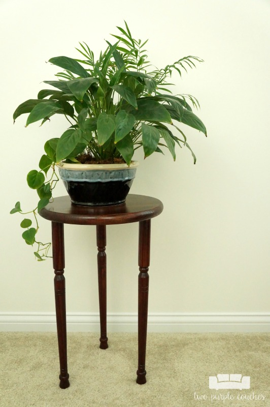 Build your own plant stand with this step-by-step tutorial. This simple DIY indoor wooden plant stand is an easy projects you can make in a weekend.