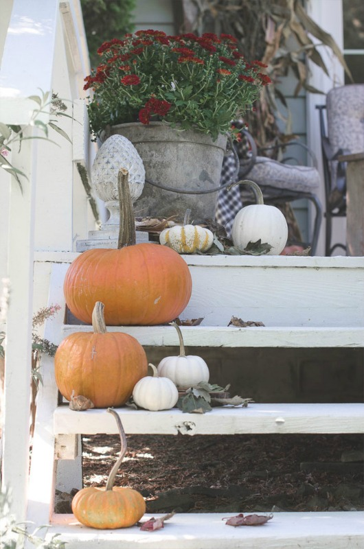 pumpkins-up-steps