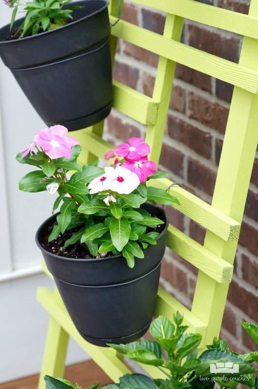 DIY Vertical Garden Trellis Makeover. Transform your outdoor patio decor with a modern painted vertical garden trellis. Great way to display flowers, herbs.
