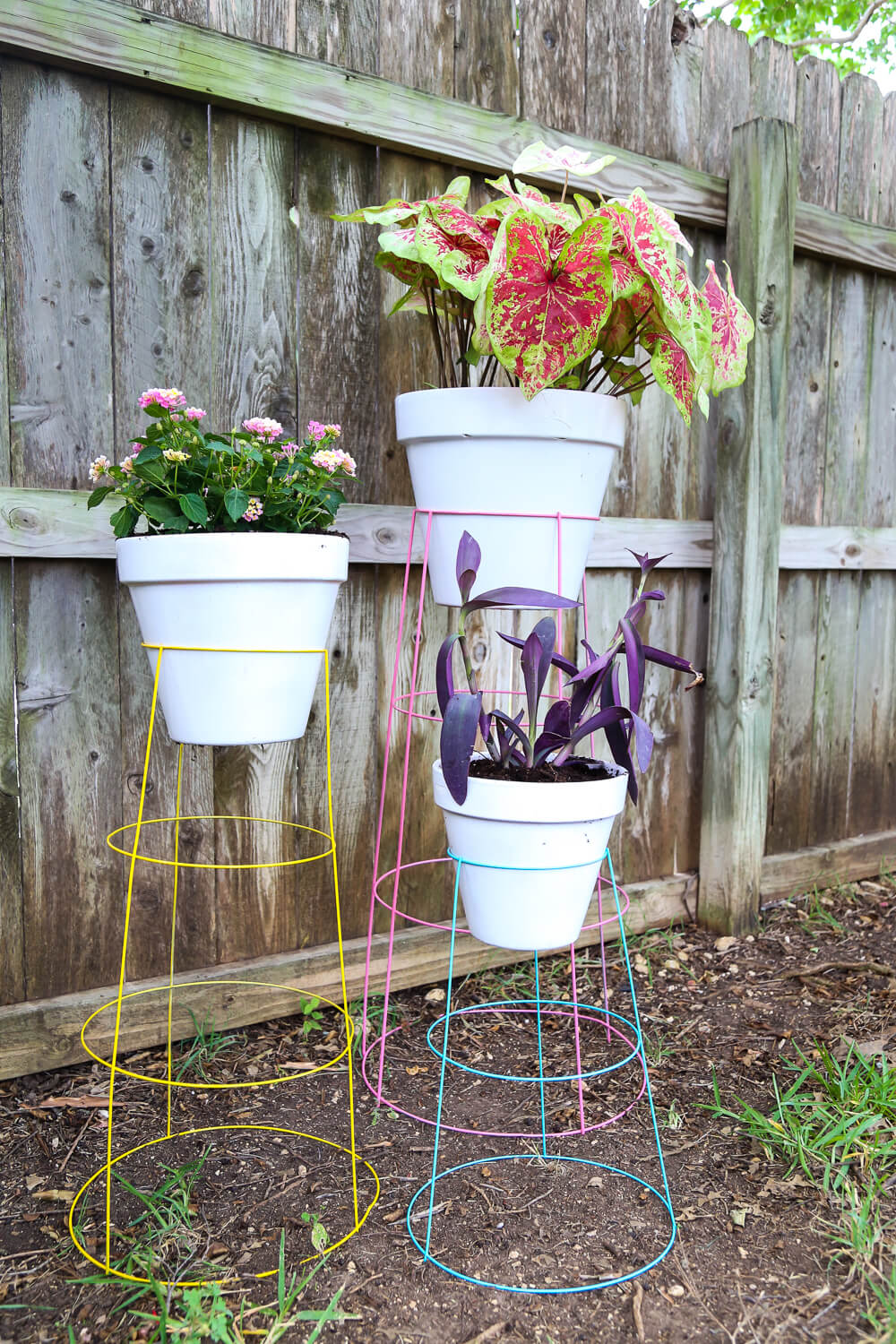 DIY plant stands using tomato cages