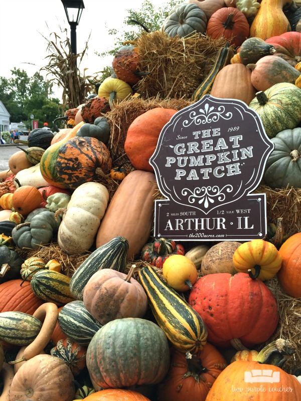 Country Living Fair 2016 - the Great Pumpkin Patch