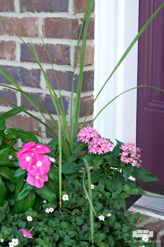 Summer porch decor - flowers and potted plants add to your curb appeal