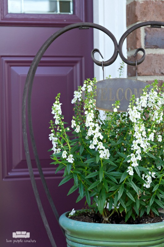 Summer porch decor - potted flowers