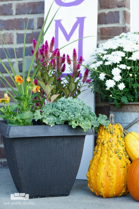 Colorful planters and pumpkins make a statement on this fall porch.