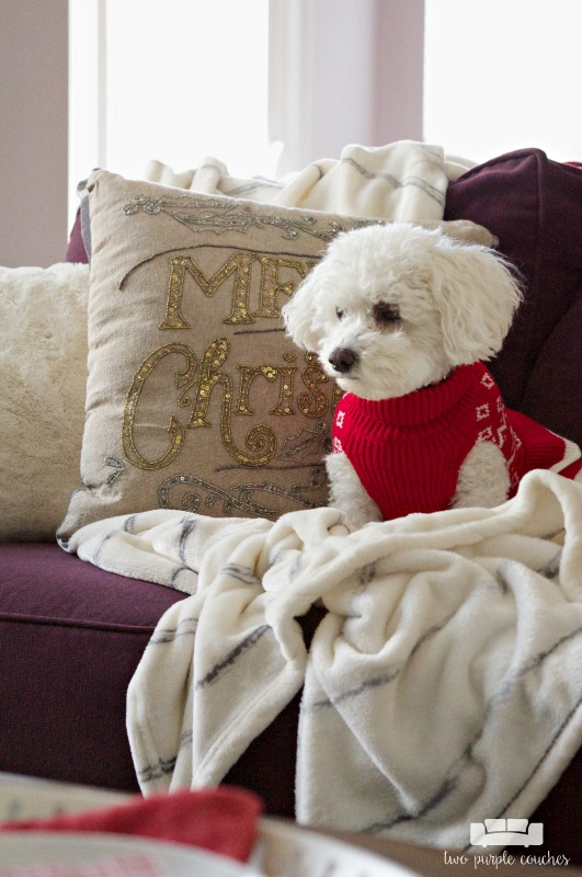 Cozy holiday home decor in the family room (the dog loves it too!)
