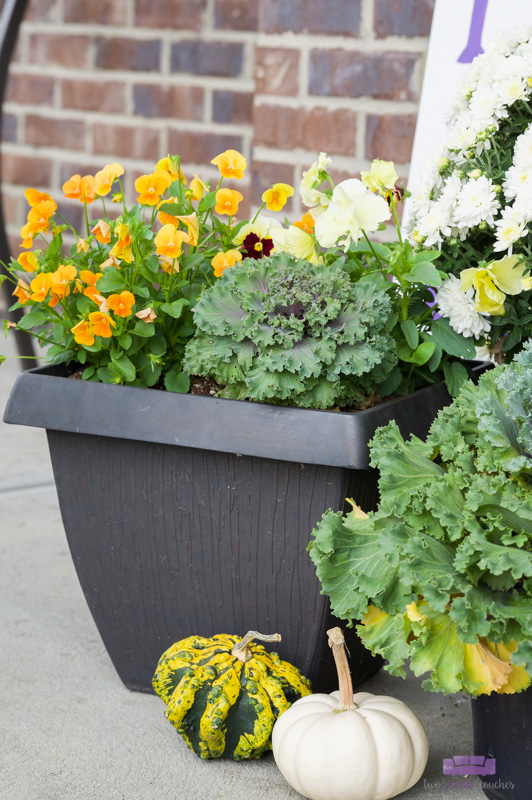 Pretty pansies and pumpkins feature in this outdoor porch decor for Fall
