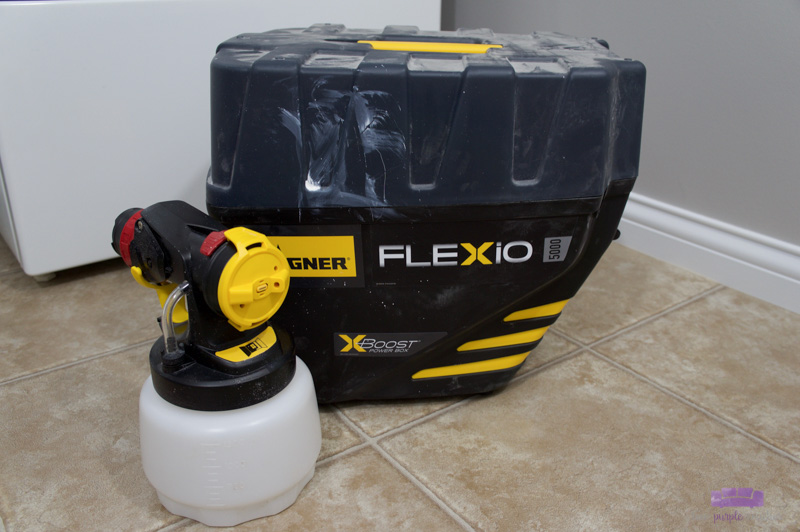 Wagner FLEXiO 5000 paint sprayer with case